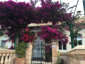 Ein Blumentor über dem Eingang