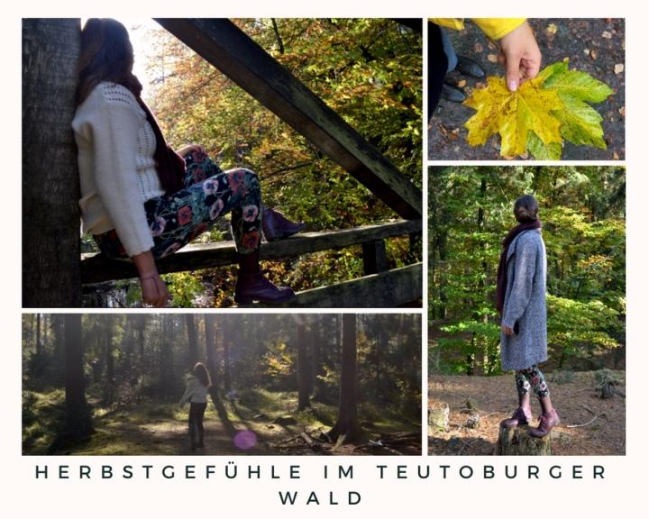 Herbstgefühle im Teutoburger Wald – Warum man sich Freizeit (im Herbst) einfach nehmen muss✨🍁🍃🌲